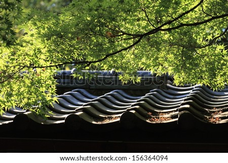 Tree branches over roof, japanese architecture - stock photo