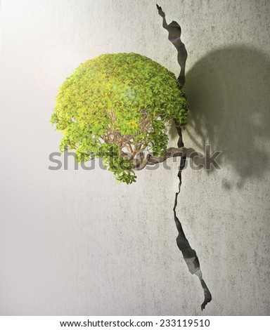 Tree breaks free. Good concept for freedom and success concept. - stock photo