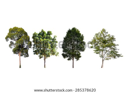 Tree collection isolated on white background - stock photo