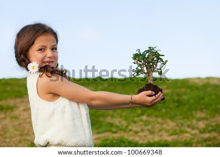 tree concept for nature and environment - stock photo