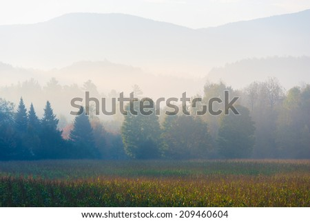 Tree covered foggy mountain range over a corn field, Stowe, Vermont, USA - stock photo