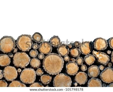 tree felling - stock photo