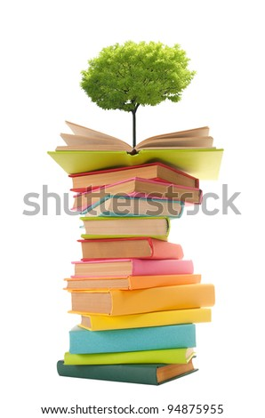 Tree growing from an open book - stock photo