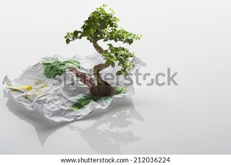 Tree Growing From Drawing - stock photo