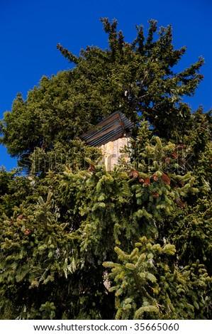 tree house - hunting lodge - stock photo