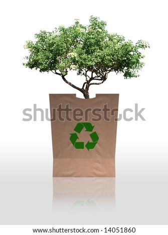 Tree Hugger - stock photo