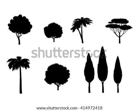 Tree icon. Tropical Trees labels. Tree silhouettes set. Different palm, cypress, olive trees. Trees isolated on white background. Digital illustration. - stock photo