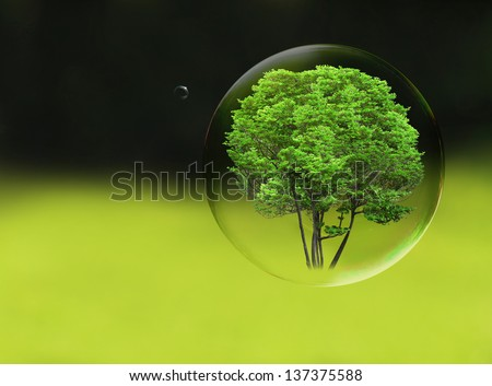Tree in a bubble, room for text or copy space - stock photo
