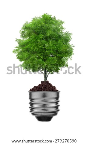 tree in a lightbulb over white, green energy concept - stock photo
