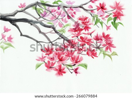Tree in blossom with pink flowers watercolor painting. Asian style. - stock photo