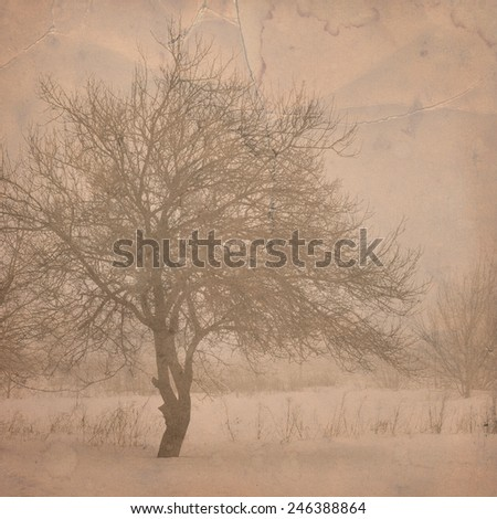 Tree in the field. Grunge and retro style