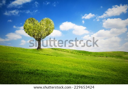 Tree in the shape of heart for valentines day - stock photo