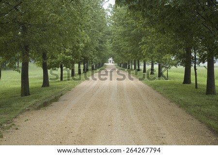 Tree lined road to Southern Plantation in Surry County Virginia - stock photo