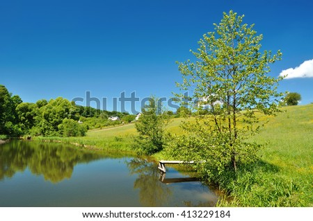 tree near a forest lake in summer - stock photo