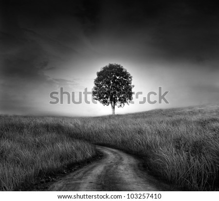 Tree of hope (conceptual surreal style) - stock photo