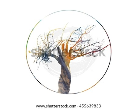 Tree of Life Illustration of a Tree and Human Hand as One in Muted Colors