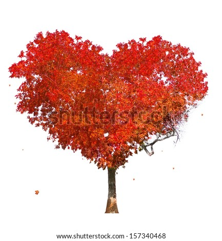 Tree of love on white background - stock photo