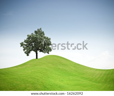 Tree on a green hill - stock photo