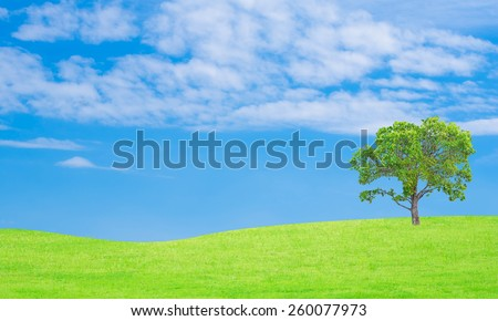 tree on grass and sky background