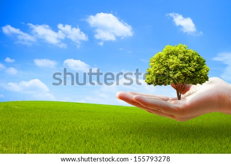Tree on hand over green field  - stock photo