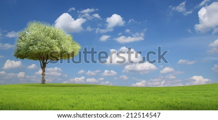 Tree on hill and blue sky with clouds in the background.