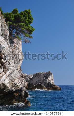 tree on the rock in the sea - stock photo
