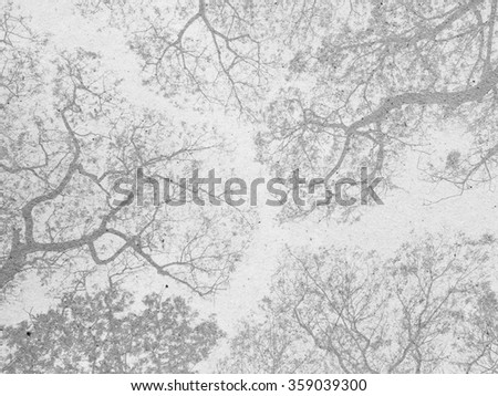 Tree pattern on paper - stock photo