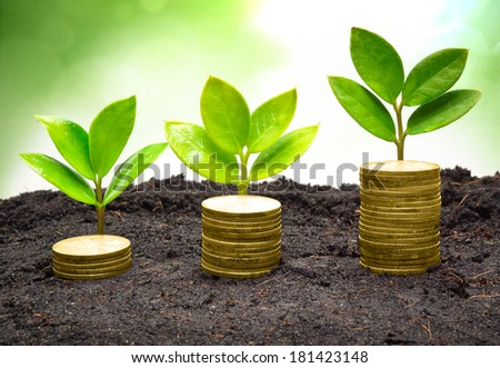 tree piles of coins with small trees / csr / good governance / green business / business ethics - stock photo
