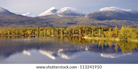 Tree reflecting in a lake in autumn countryside scene. Abisko national park - stock photo