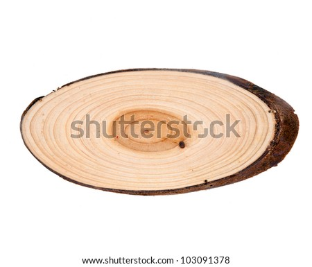 Tree rings. Wooden background white