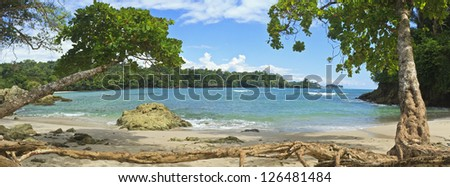 Tree roots and driftwood line the south end of Playa Manuel Antonio in Manuel Antonio National Park, Costa Rica - stock photo