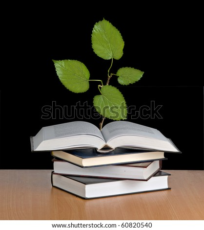 Tree seedling growing from book