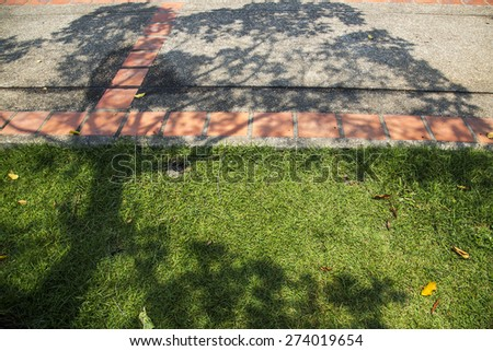 Tree shadow and walk way - stock photo