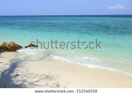 Tree shadow on the beach with the crystal sea - stock photo