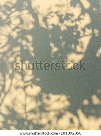 tree shadow on the wall background - stock photo