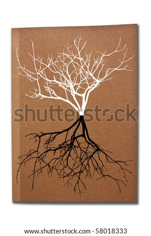 Tree shadows on the book cover - stock photo