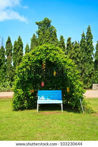 Tree shelter in a green garden with blue sky - stock photo