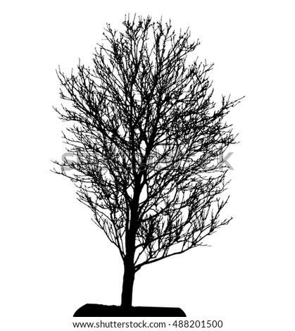 Tree Silhouette Isolated on White Backgorund. Illustration.