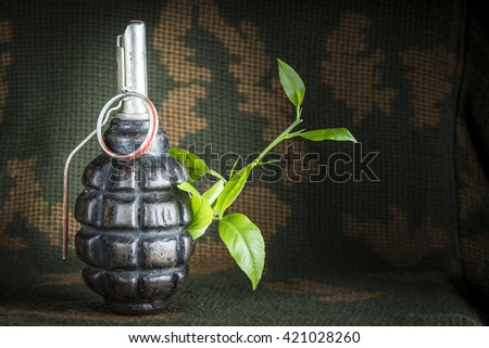 Tree sprout in the shell of  fragmentation grenade, cmouflage background