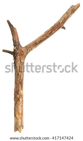 Tree stick isolated on white background
