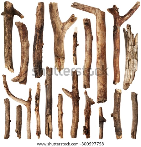 Tree sticks isolated on white background. Set - stock photo