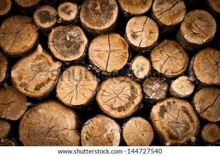 tree stump background - stock photo