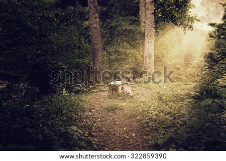 tree trunk at scary shiny forest with light ray of bright moon - stock photo