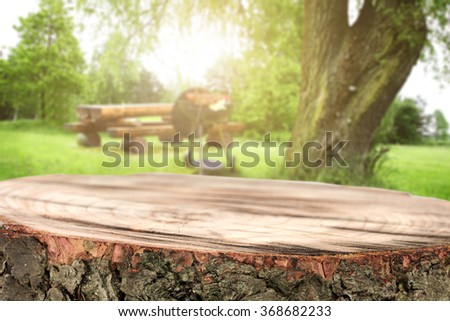 tree trunk background for your decoration and grill and party in park