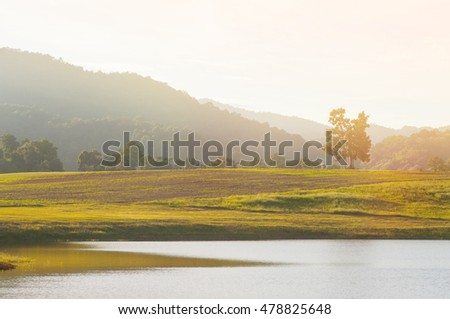 Tree with mountains hill and lake landscape.