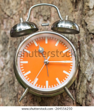 Tree with swag clocks on tree background - stock photo