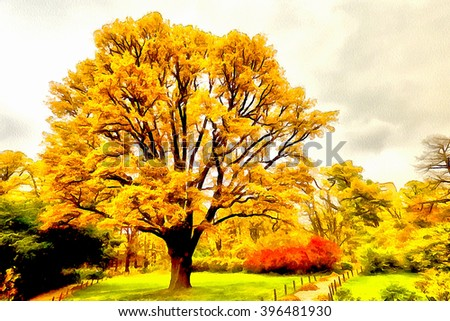 Tree with yellow foliage in autumn city park - stock photo