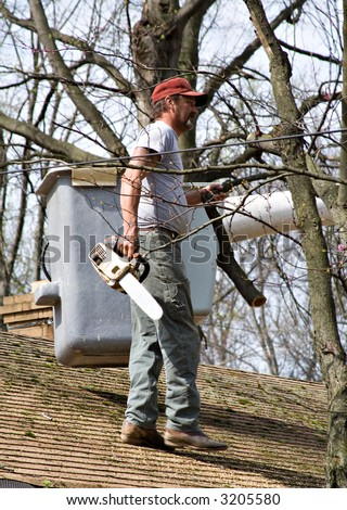 Tree worker removing branches over roof - what out for that electric line! - stock photo