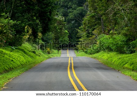 Trees along a empty road, Boquete village, Panama,Central America - stock photo