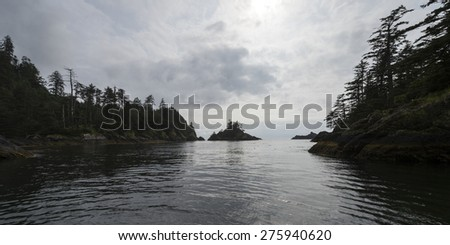 Trees along coastline, Skeena-Queen Charlotte Regional District, Haida Gwaii, Graham Island, British Columbia, Canada